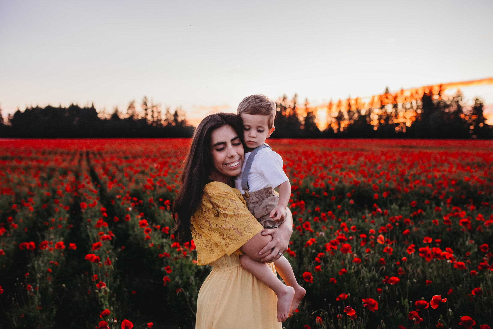 Poppy Fields in Oregon
