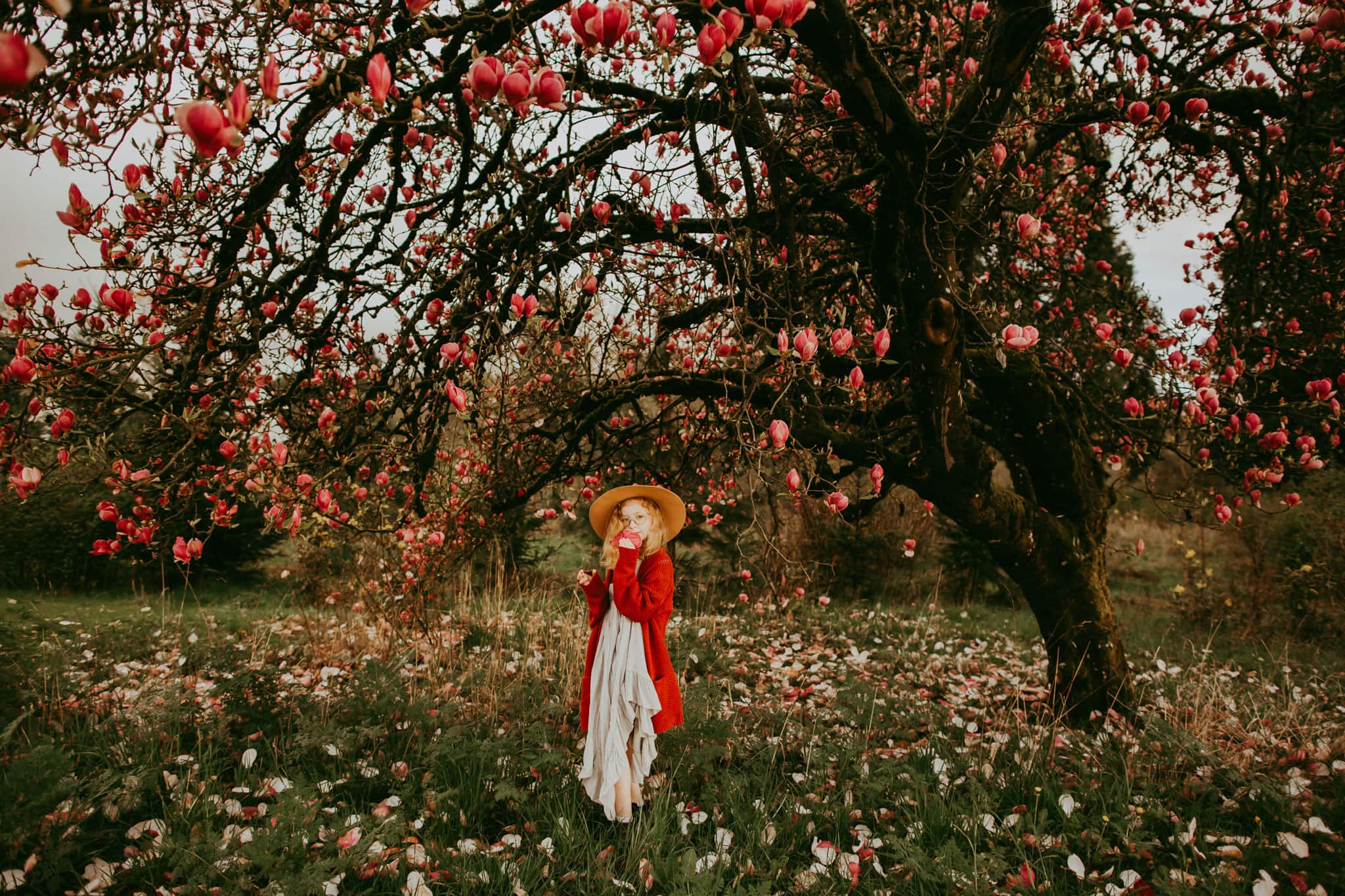 spring photos of little girl under magnolia tree