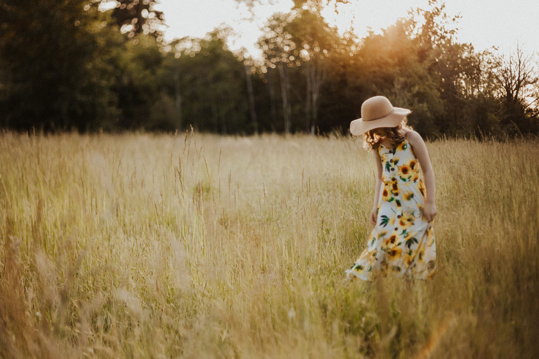 freelensing image in field of grass