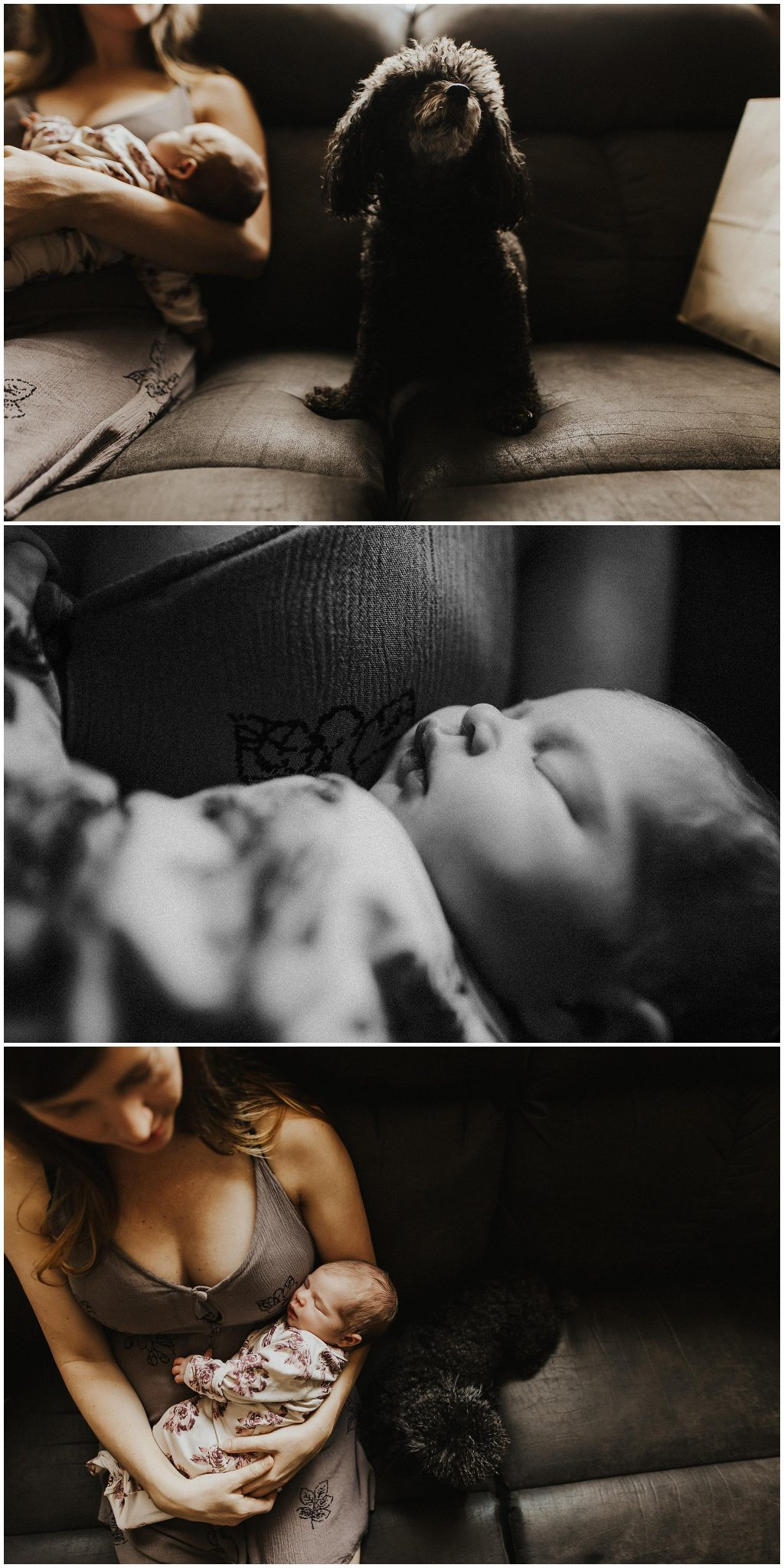 Portland Oregon Lifeestyle Newborn in-home Photographer
