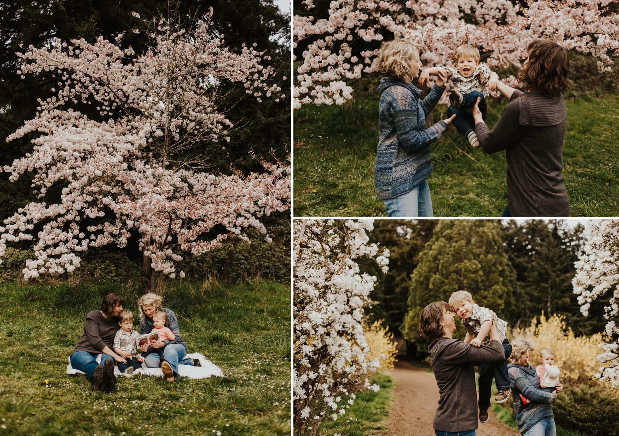 portland cherry blossoms photography spring - spring season family photos