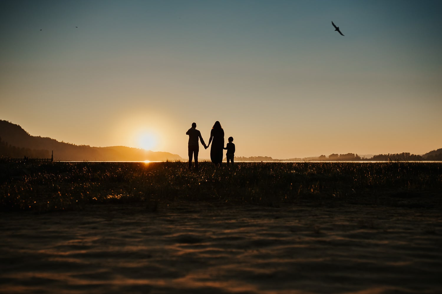 Silhouette of family of three walking towards the sun