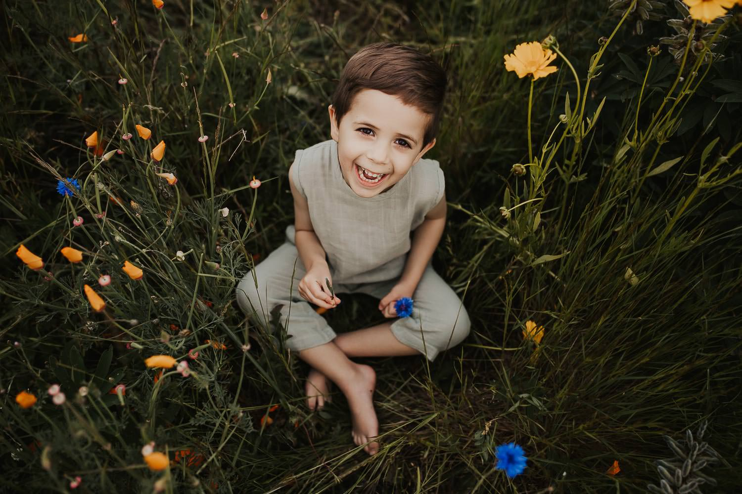 Toddler boy laughing while sitting in flowers