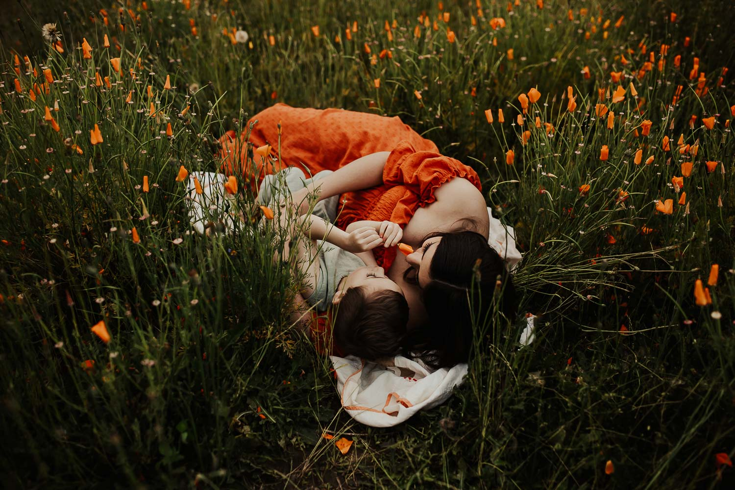 Mom and toddler laying down in a field of orange poppies near portland oregon