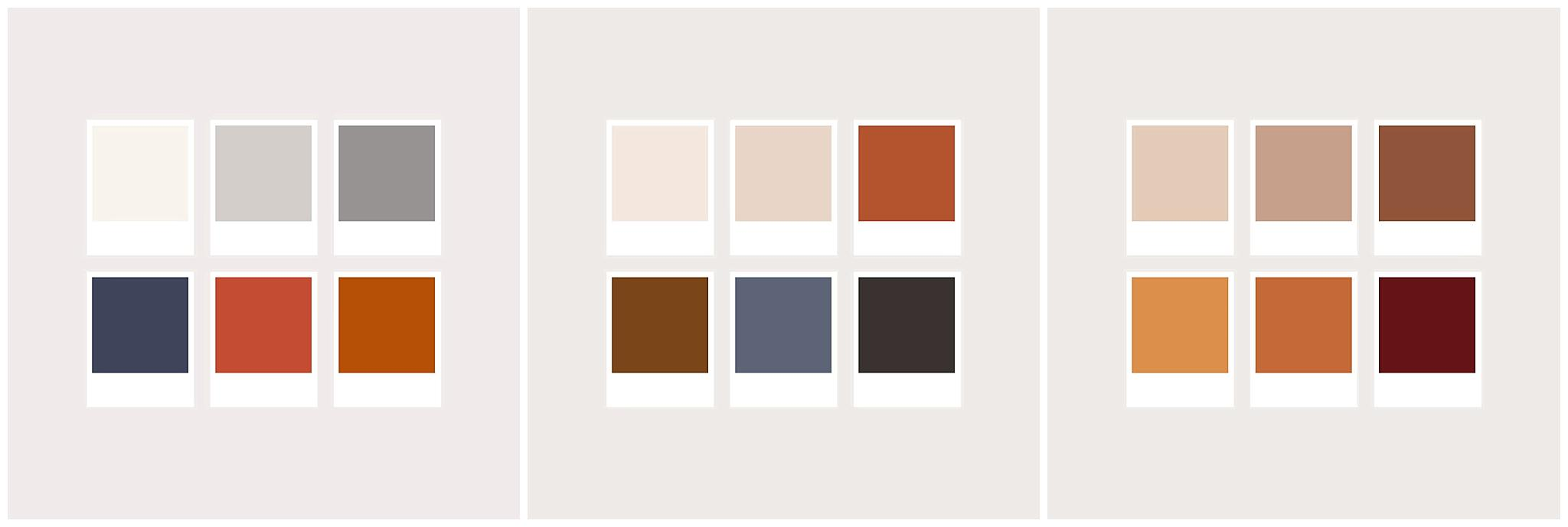 three different color palettes for family photos