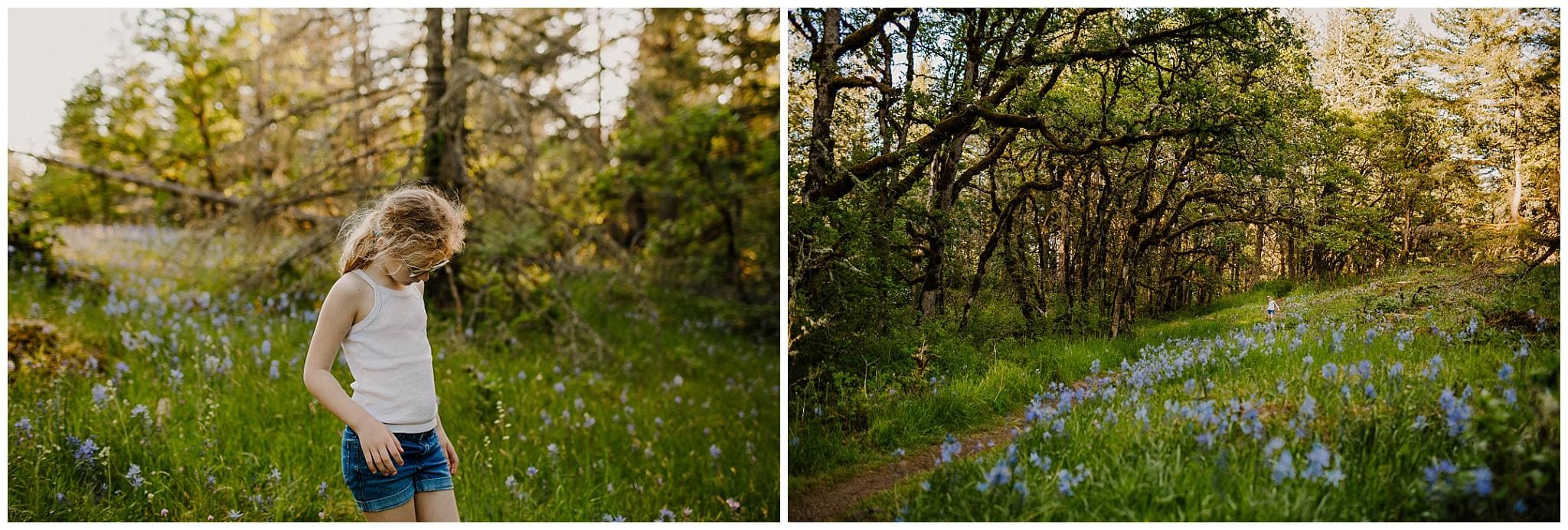 girl in a field of camassia lillies in camas near Portland Oregon in the spring