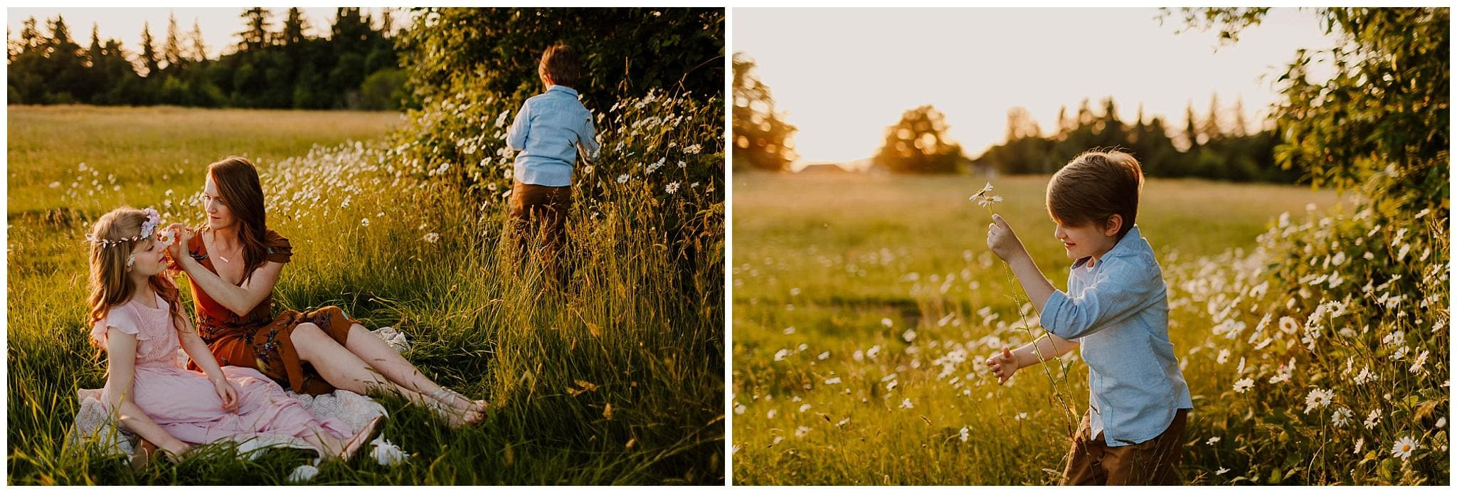 Little boy picking daisies and bringing it to his mom and sister